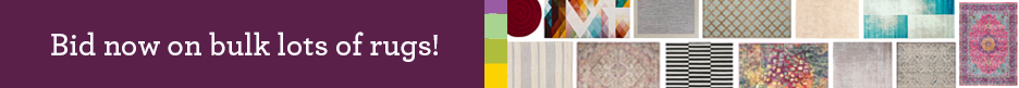 Wayfair EU Liquidation Auctions Bid Now On Bulk Lots of Rugs